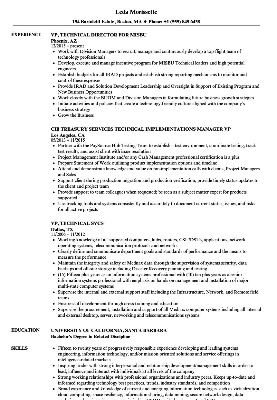 vp resume samples