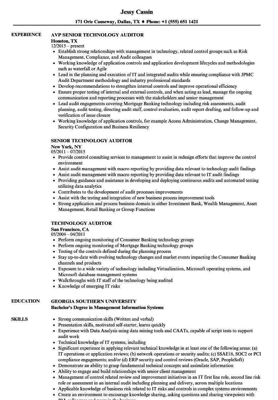 technology auditor resume samples