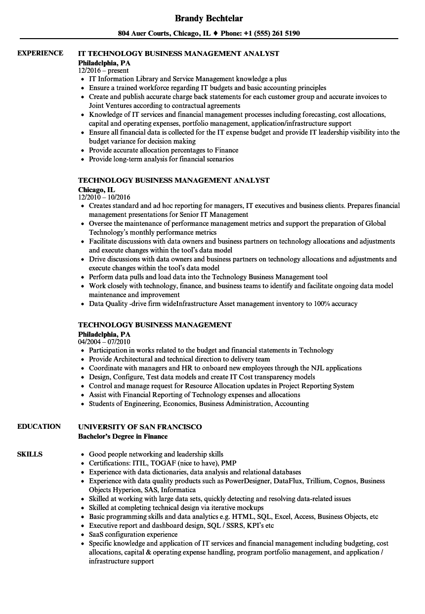 Technology Business Management Resume Samples | Velvet Jobs