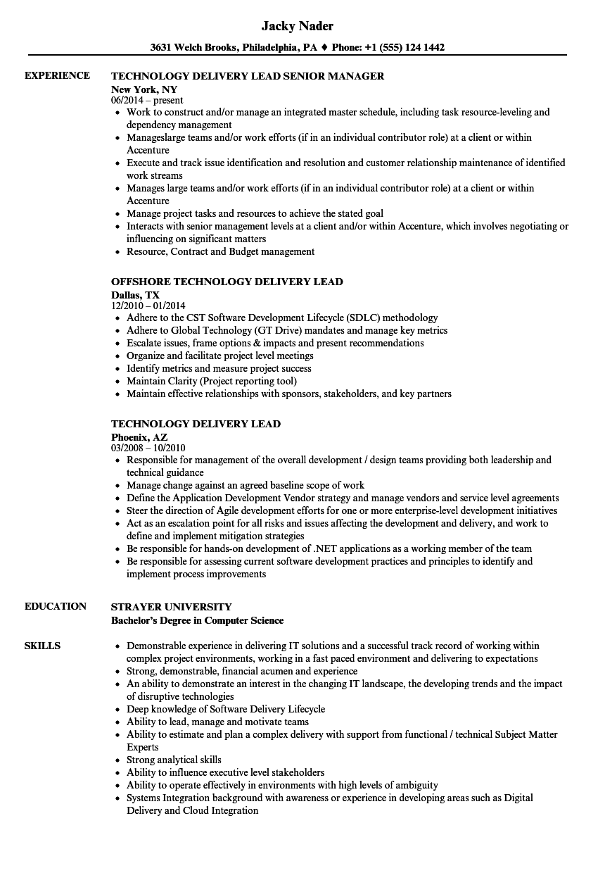 technology delivery lead resume samples