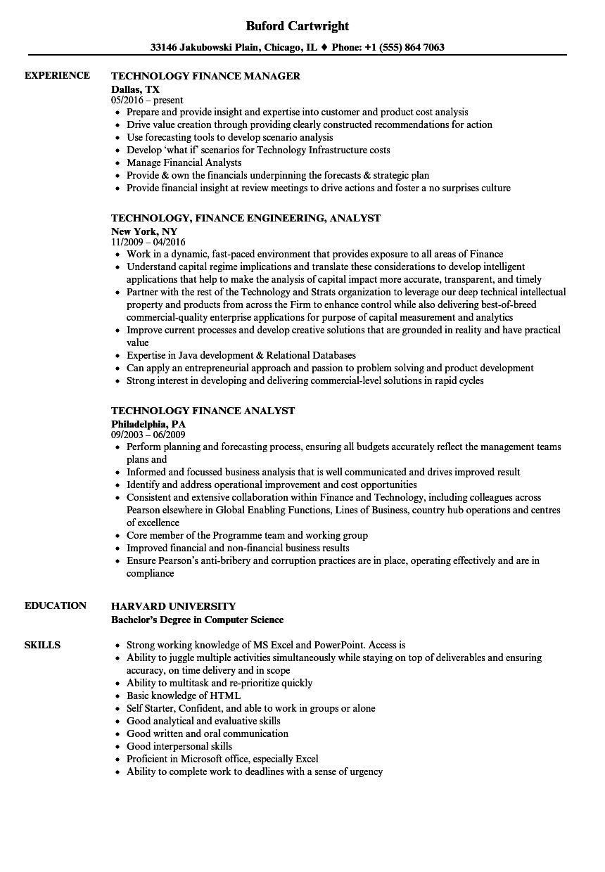 technology finance resume samples