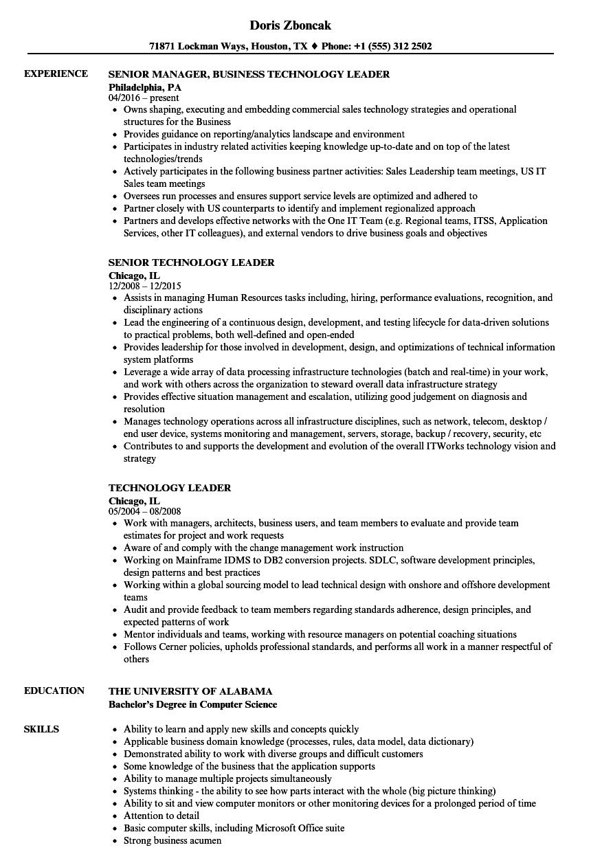 technology leader resume samples