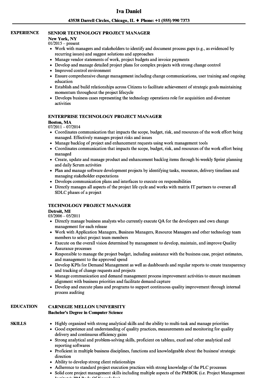 Technology Project Manager Resume Samples | Velvet Jobs