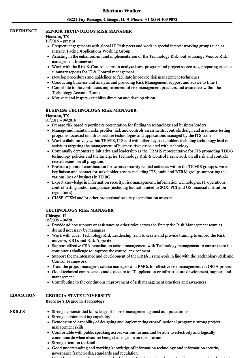 Download Technology Risk Manager Resume Sample As Image File  Information Technology Manager Resume