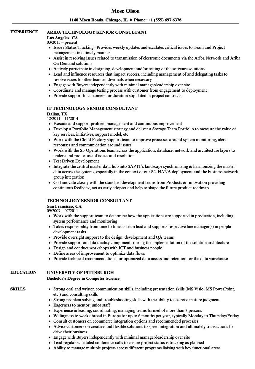 technology senior consultant resume samples