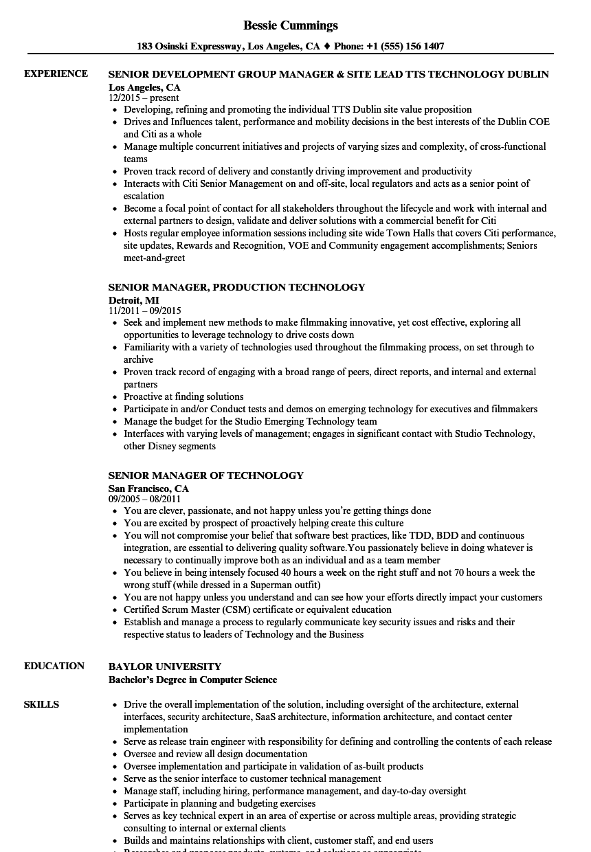 Technology Senior Manager Resume Samples | Velvet Jobs