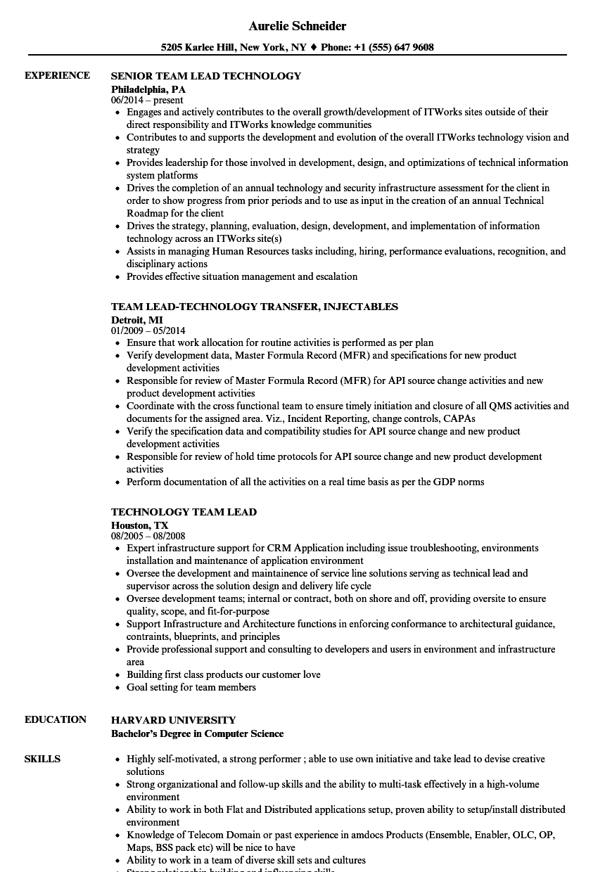 Technology Team Lead Resume Samples