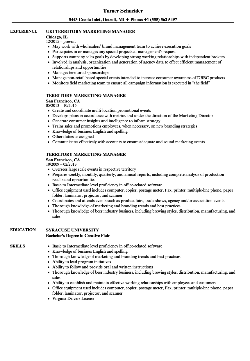 download territory marketing manager resume sample as image file - Marketing Director Resume Examples