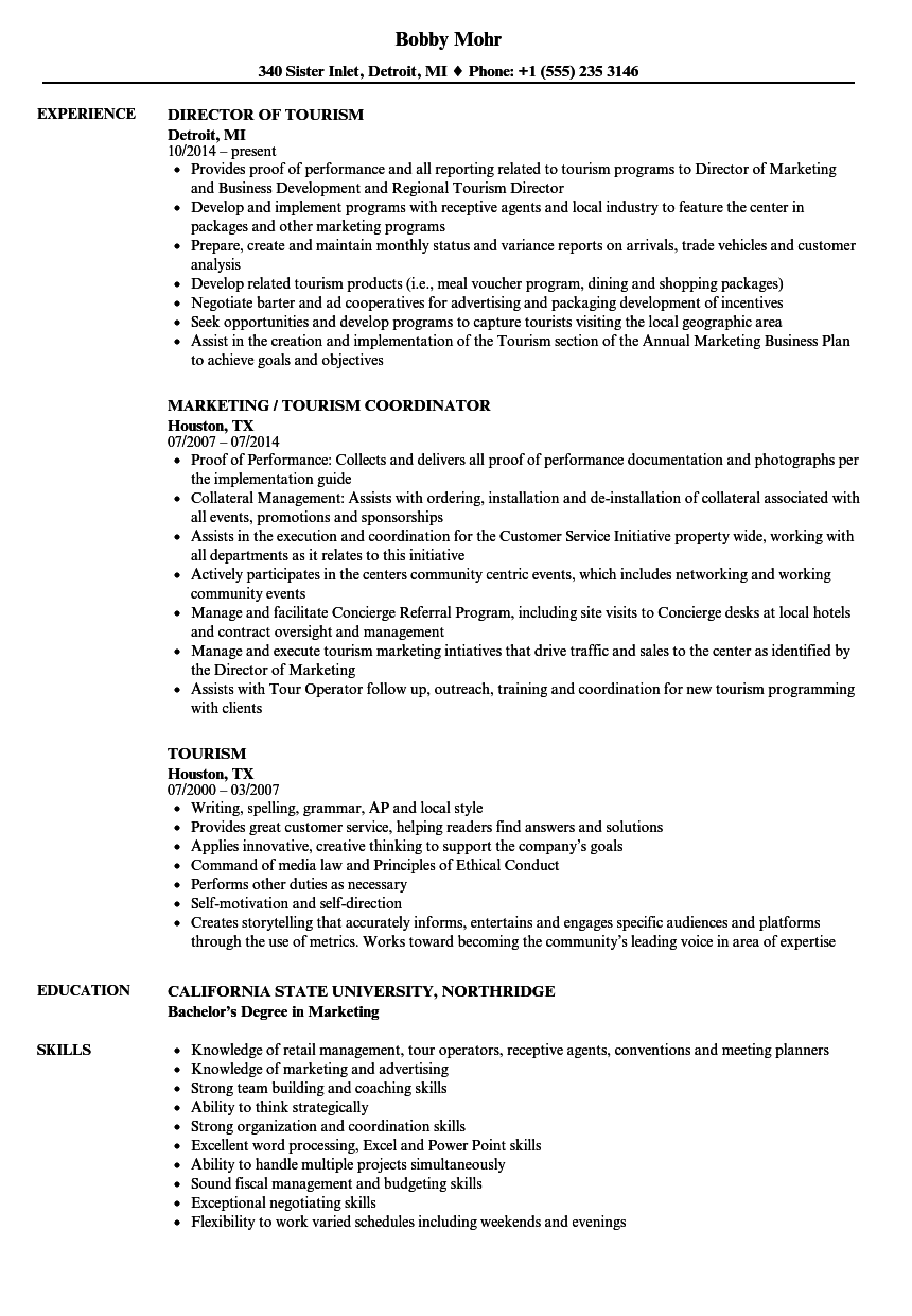 Download Tourism Resume Sample As Image File  Resume Sample Skills
