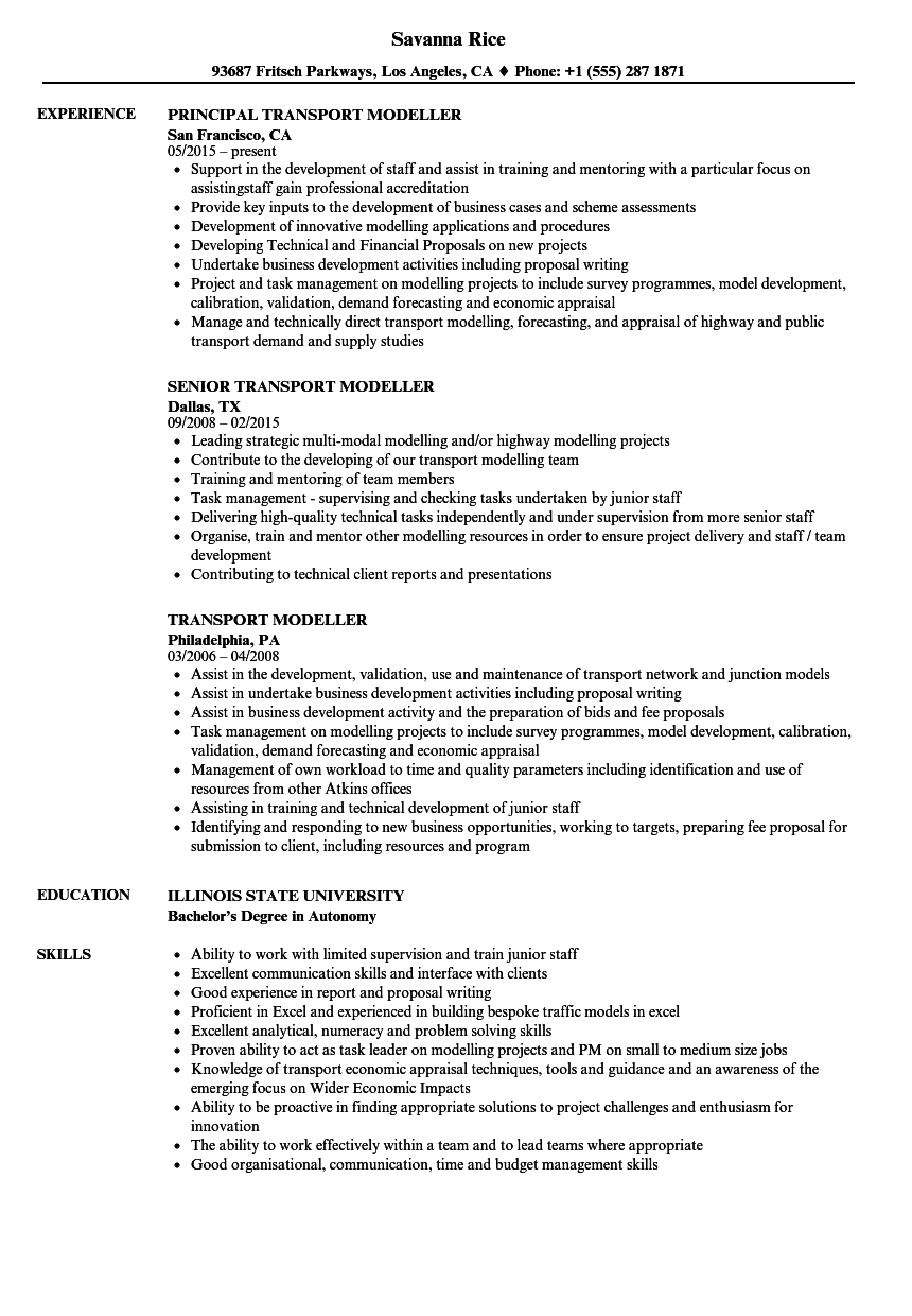 transport modeller resume samples