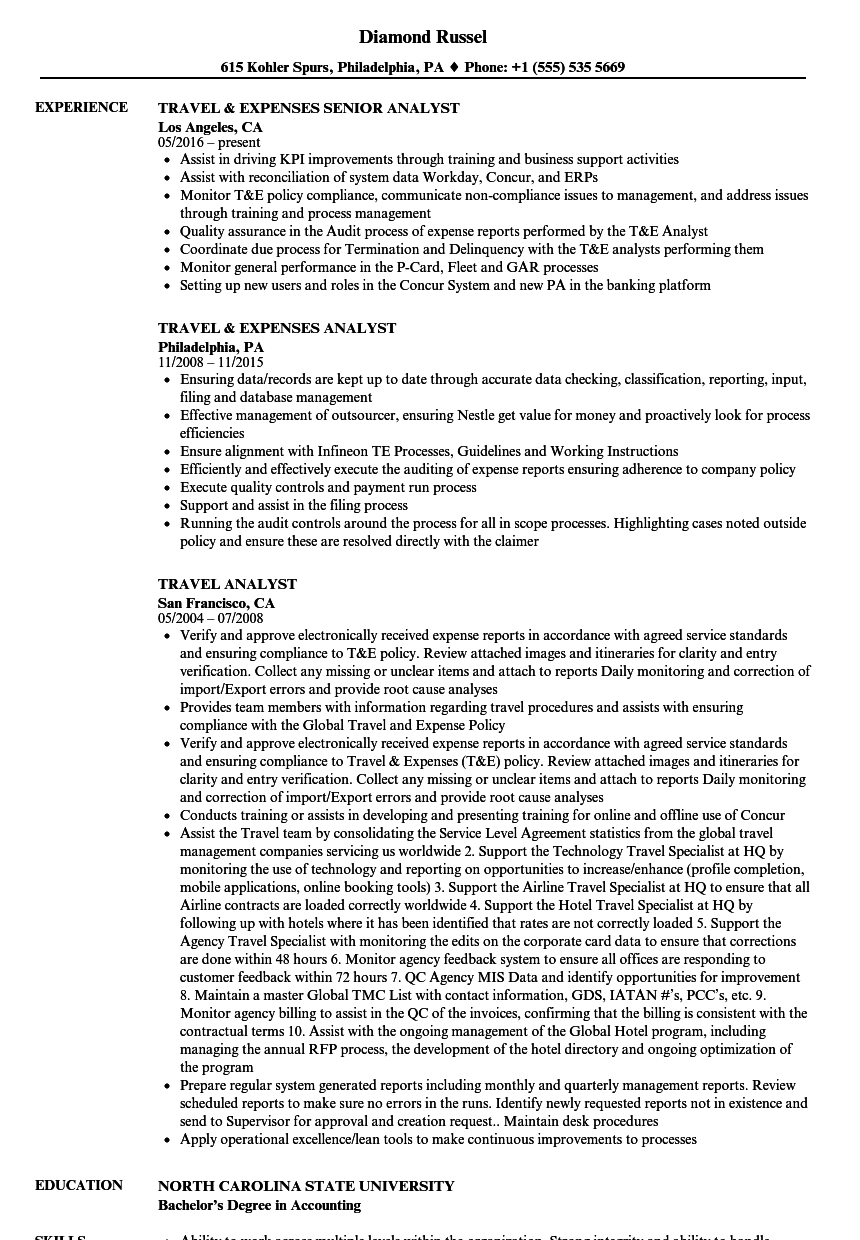 Download Travel Analyst Resume Sample As Image File