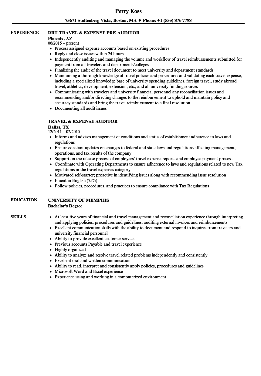 Travel Auditor Resume Samples | Velvet Jobs