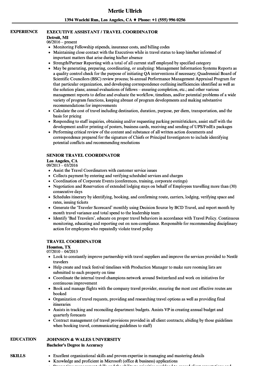 Travel Coordinator Resume Samples Velvet Jobs