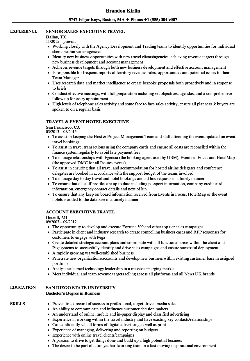 travel executive resume samples