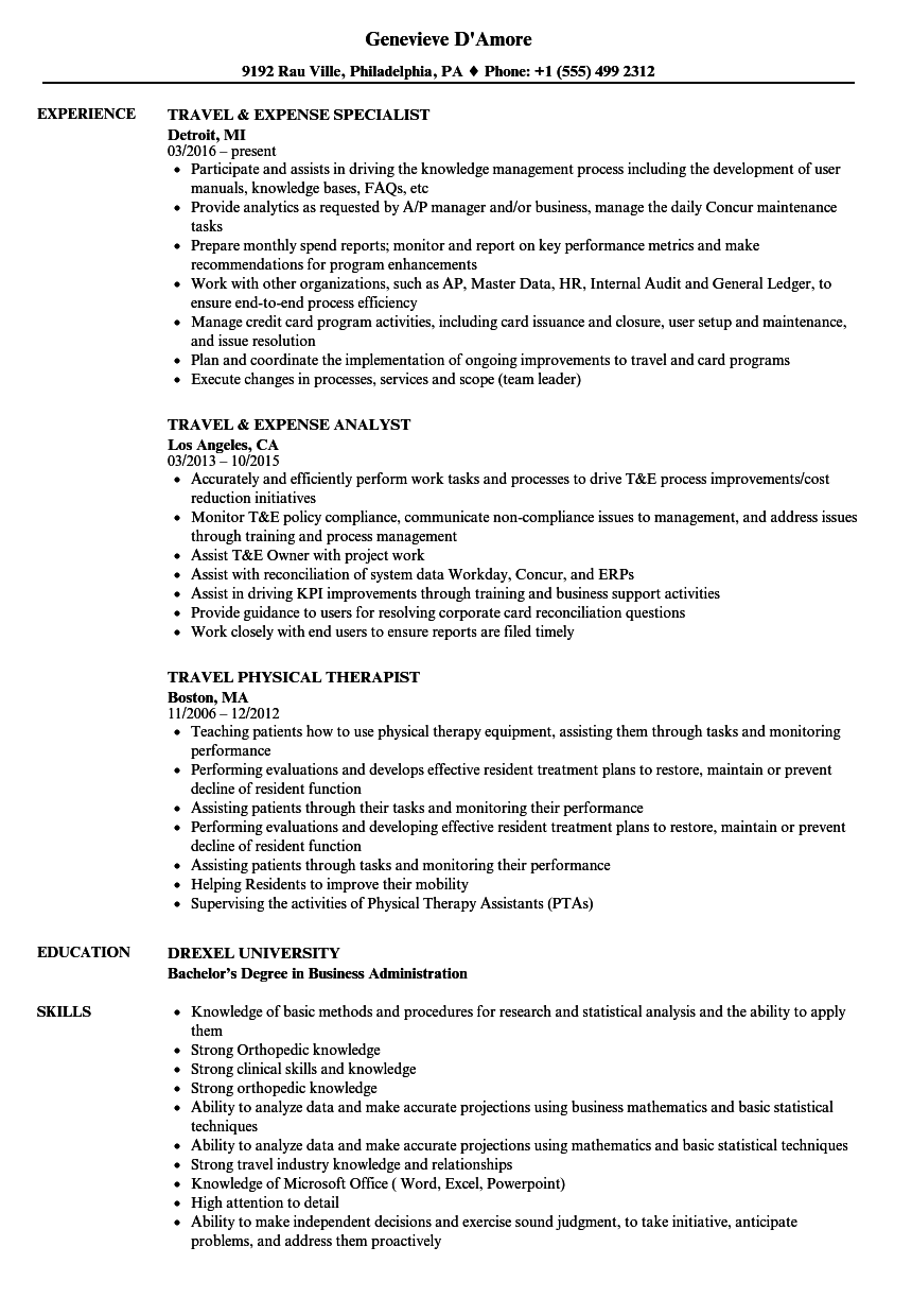 travel resume samples