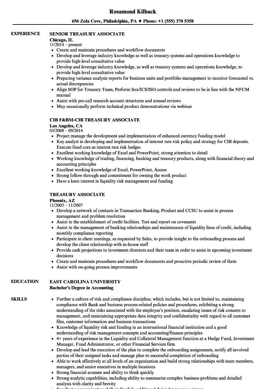 Treasury Associate Resume Samples Velvet Jobs