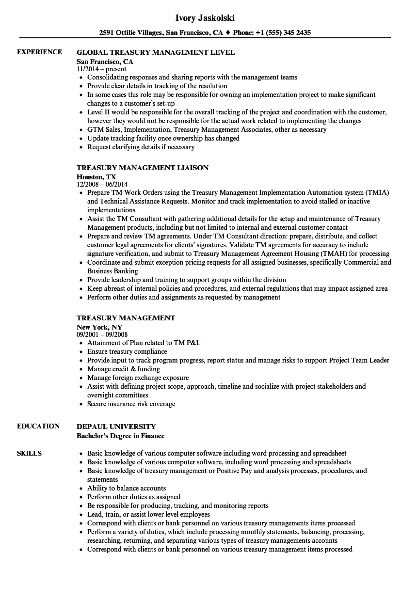 Treasury Management Resume Samples | Velvet Jobs