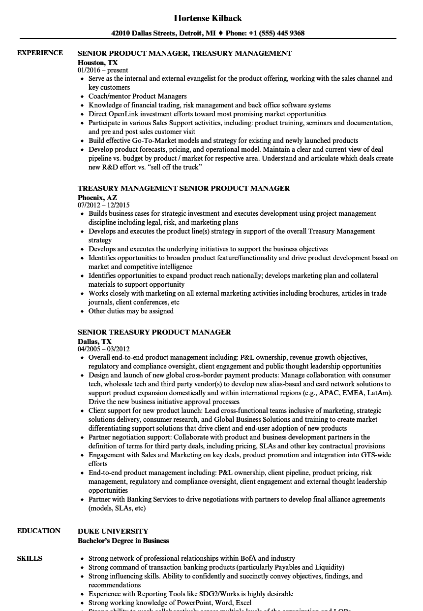 Travel Product Manager Sample Resume Cad Developer Sample Resume