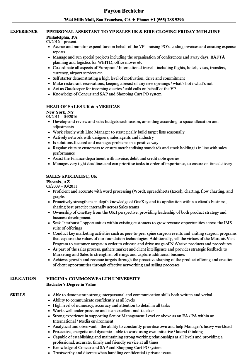 uk resume templates - Gidiye.redformapolitica.co