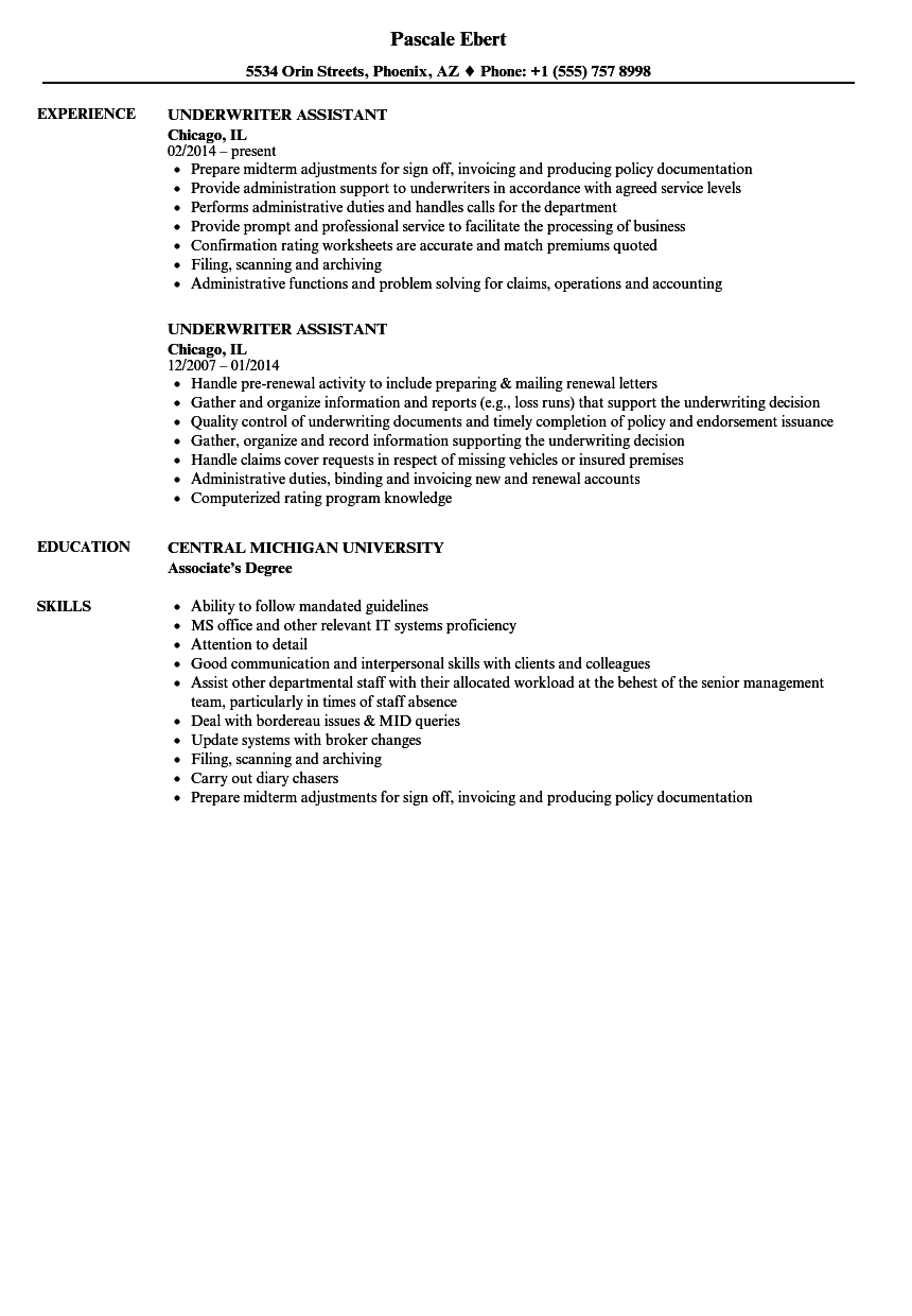 underwriter assistant resume samples