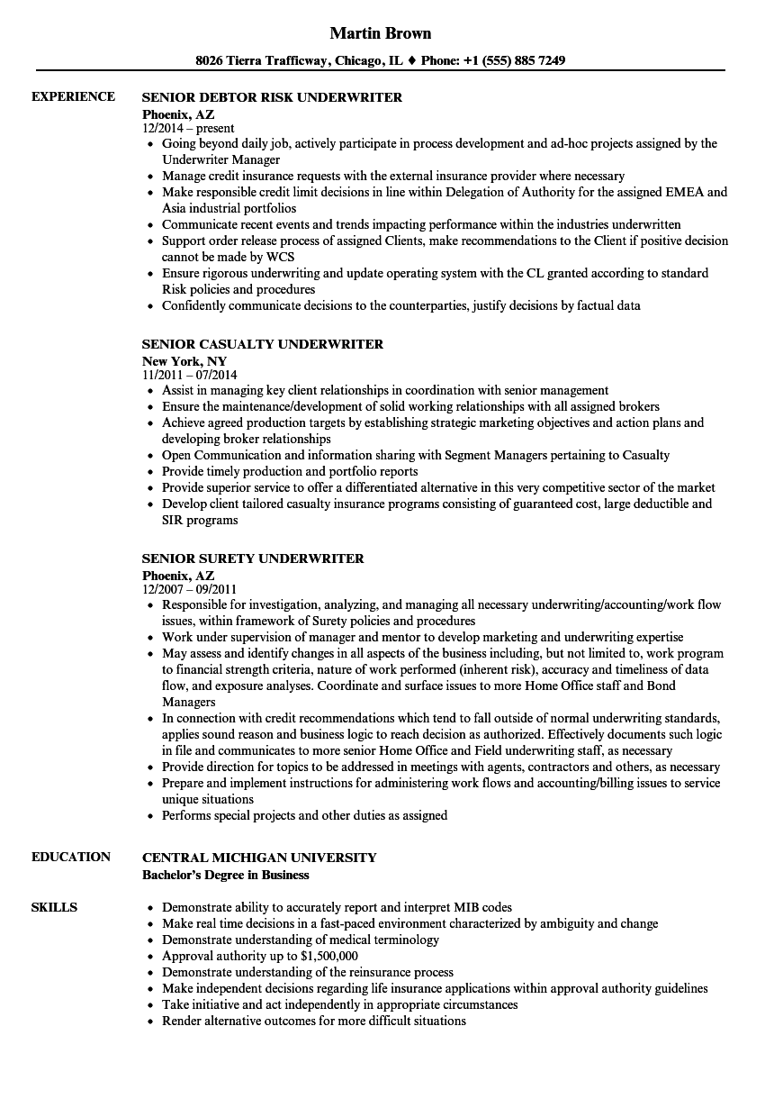 Underwriter Senior Resume Samples | Velvet Jobs