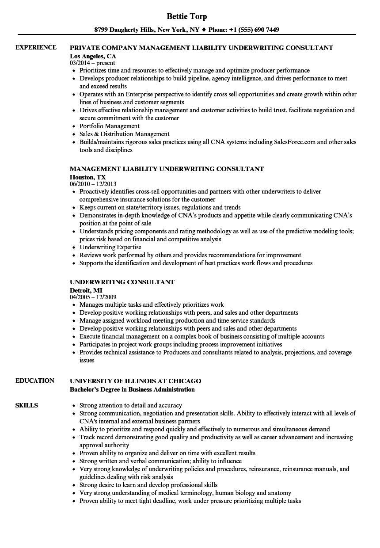 Underwriting Consultant Resume Samples Velvet Jobs