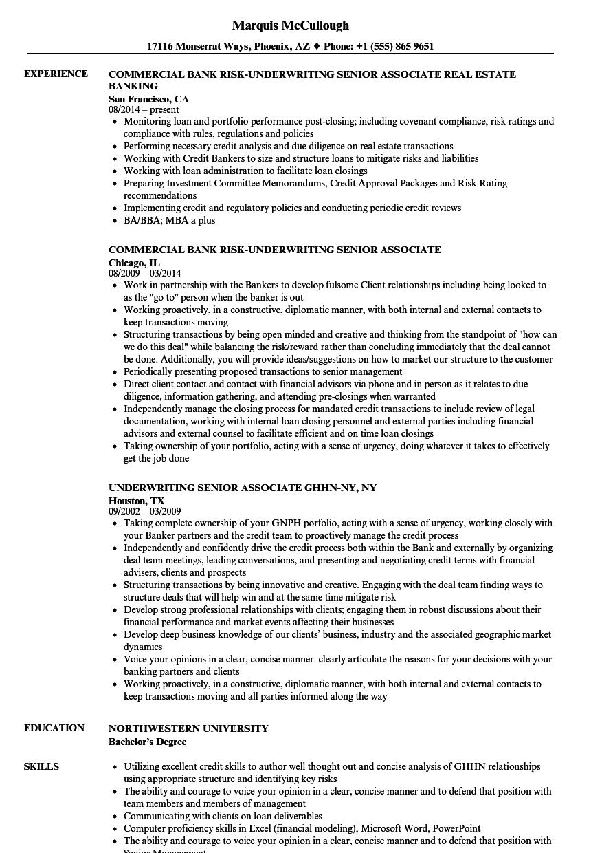 Underwriting Senior Associate Resume Samples Velvet Jobs