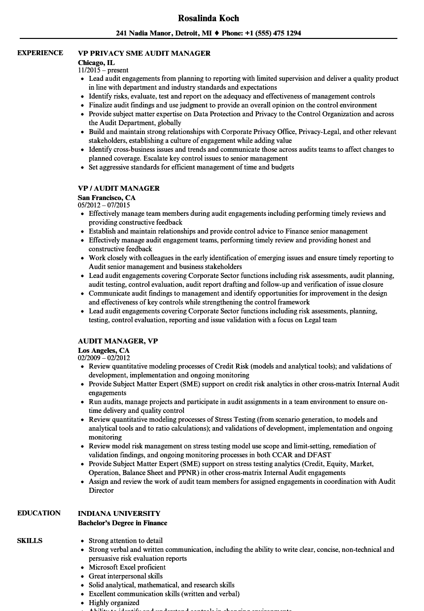 VP / Audit Manager Resume Samples | Velvet Jobs