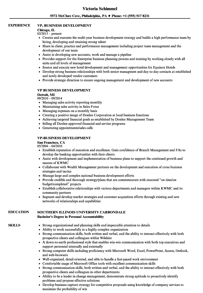 vp business development resume samples
