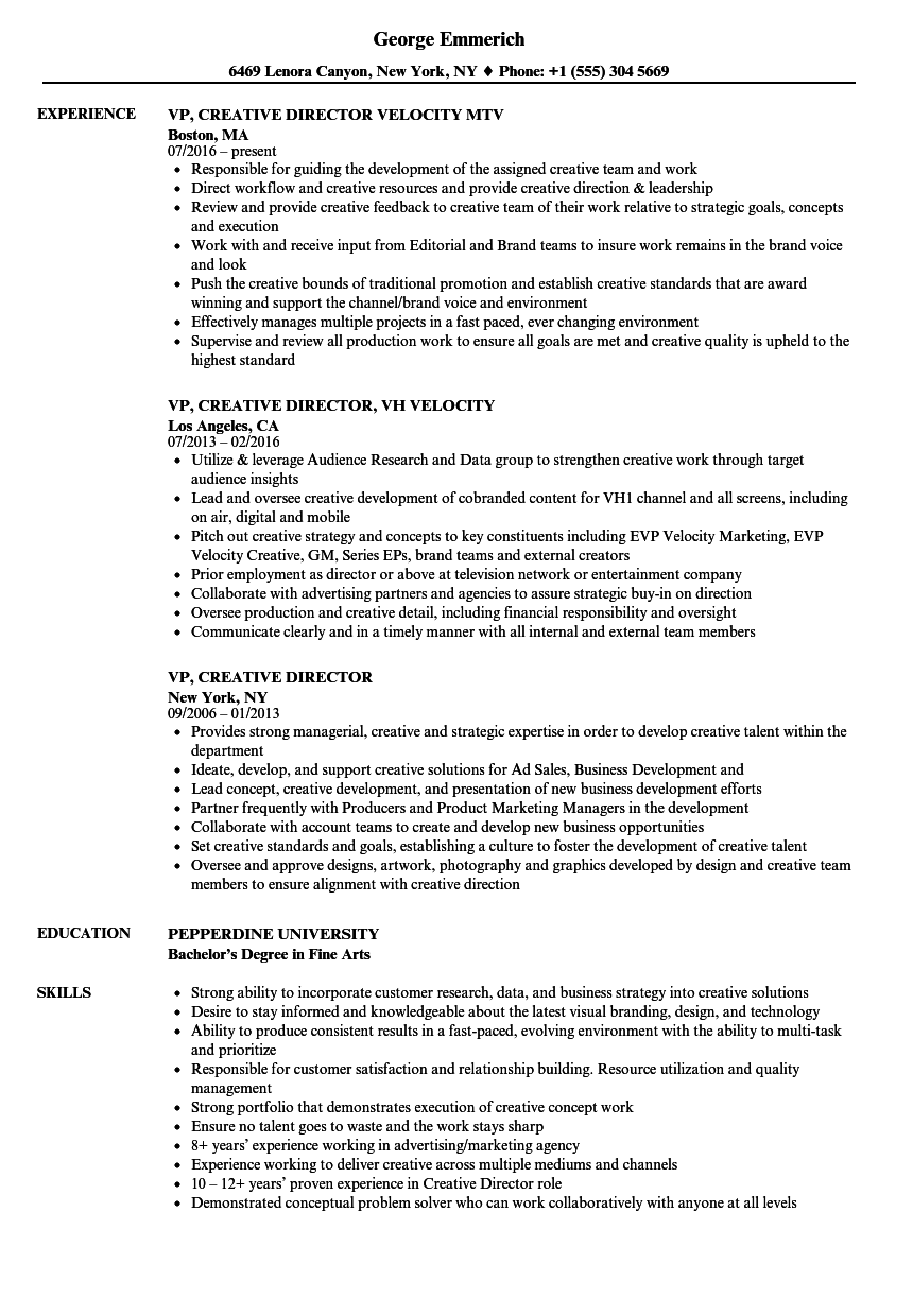 Vp creative director resume samples velvet jobs for Sample resume for managing director position