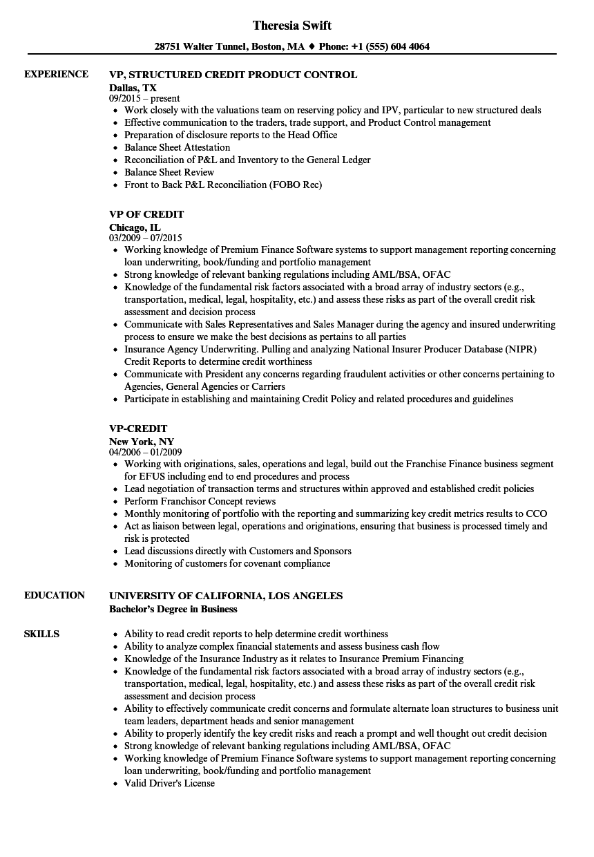 Vp credit resume samples velvet jobs download vp credit resume sample as image file thecheapjerseys