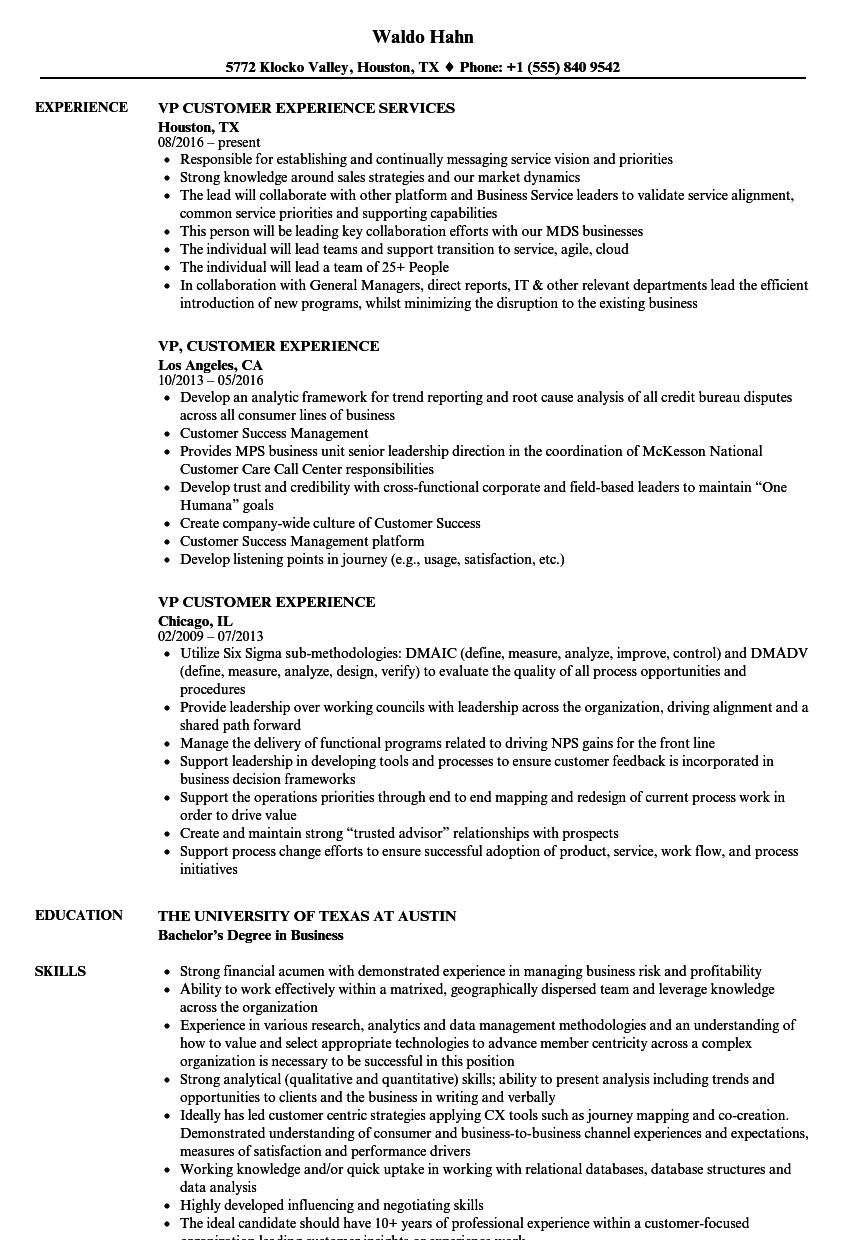 vp customer experience resume samples