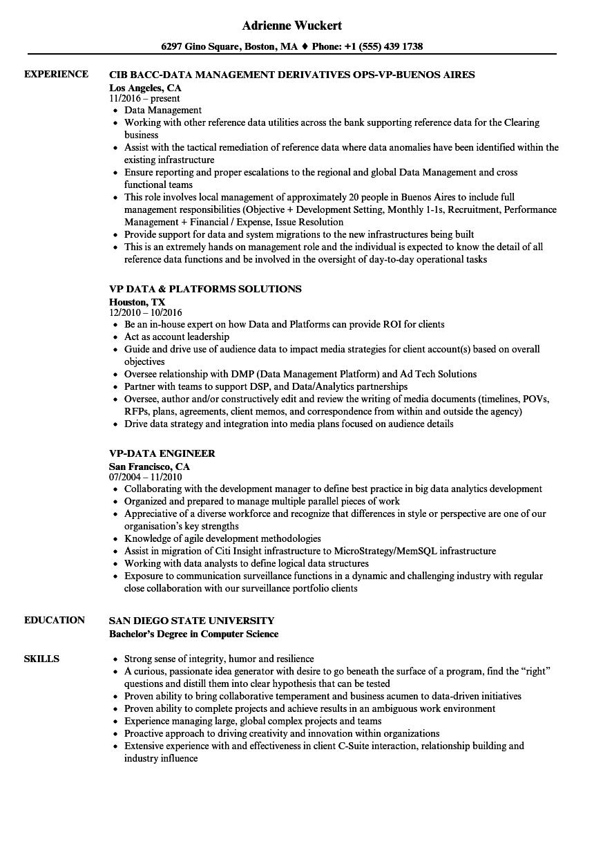 VP-data Resume Samples | Velvet Jobs