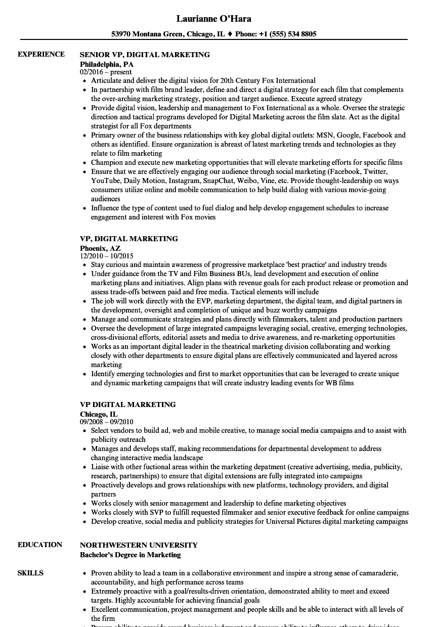 vp digital marketing resume samples velvet jobs