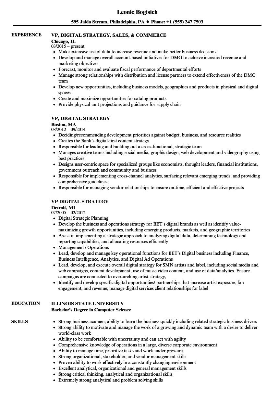 vp  digital strategy resume samples