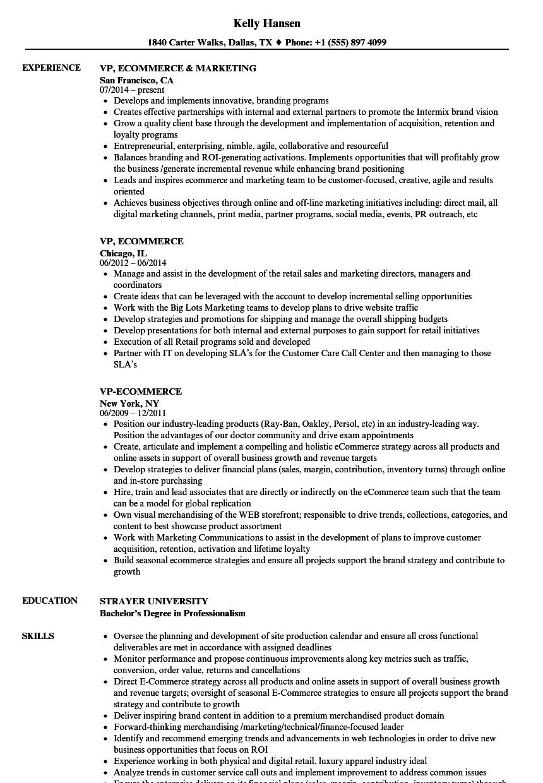 vp  ecommerce resume samples
