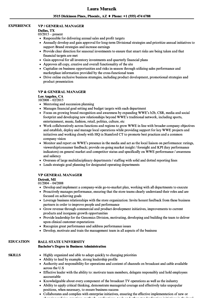 Vp General Manager Resume Samples Velvet Jobs