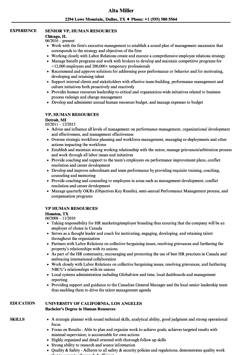 vp  human resources resume samples