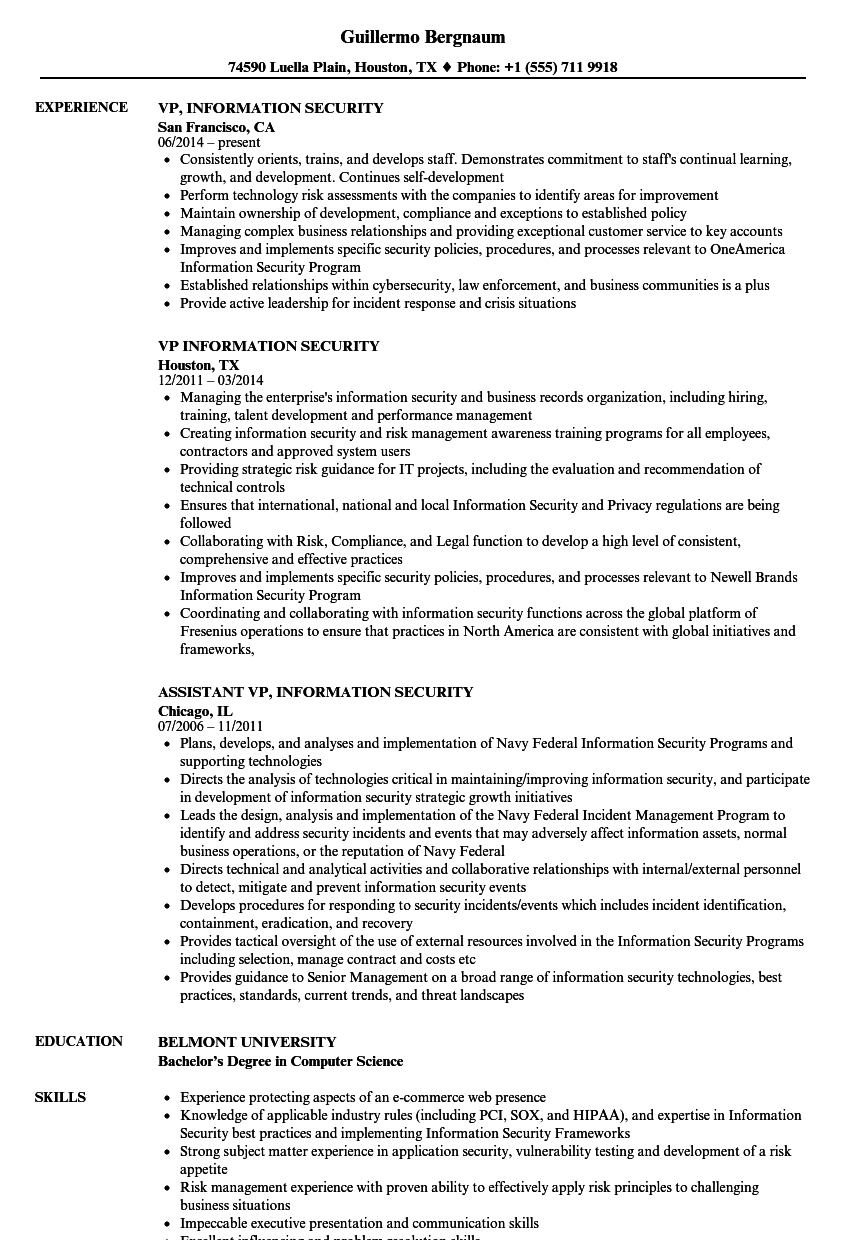 vp information security resume samples velvet jobs