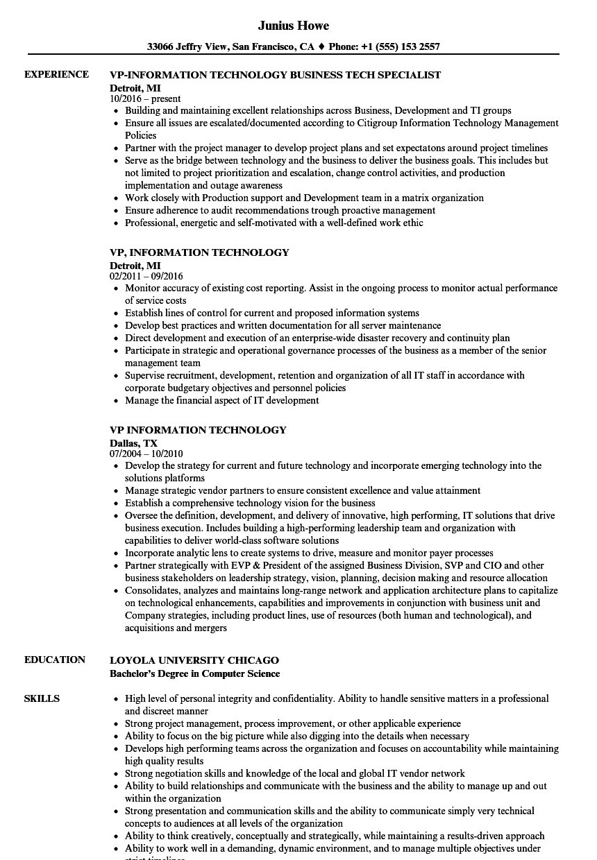 vp  information technology resume samples