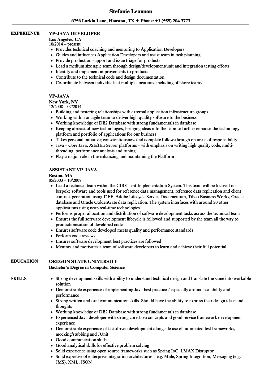 Download Vp Java Resume Sample As Image File   Sample Java Resume  Resume Java Developer