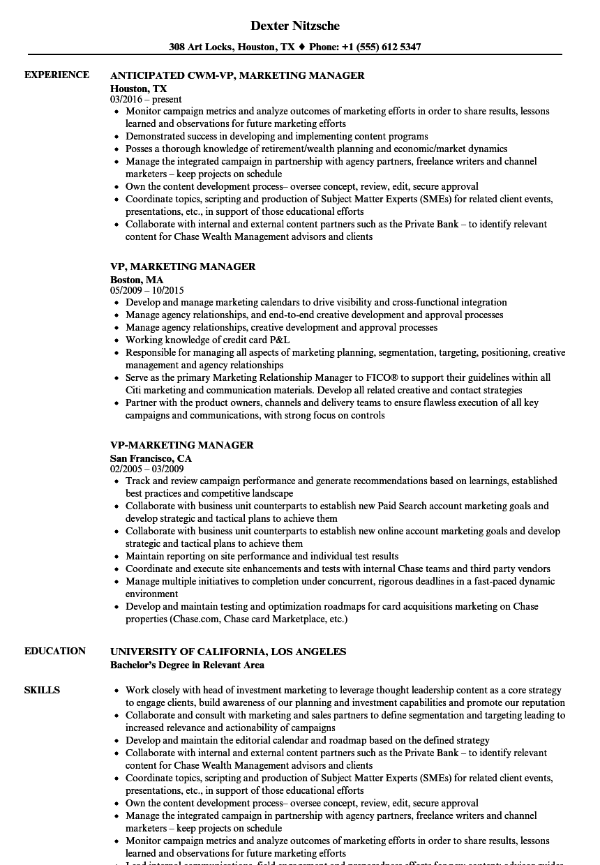 VP, Marketing Manager Resume Samples | Velvet Jobs