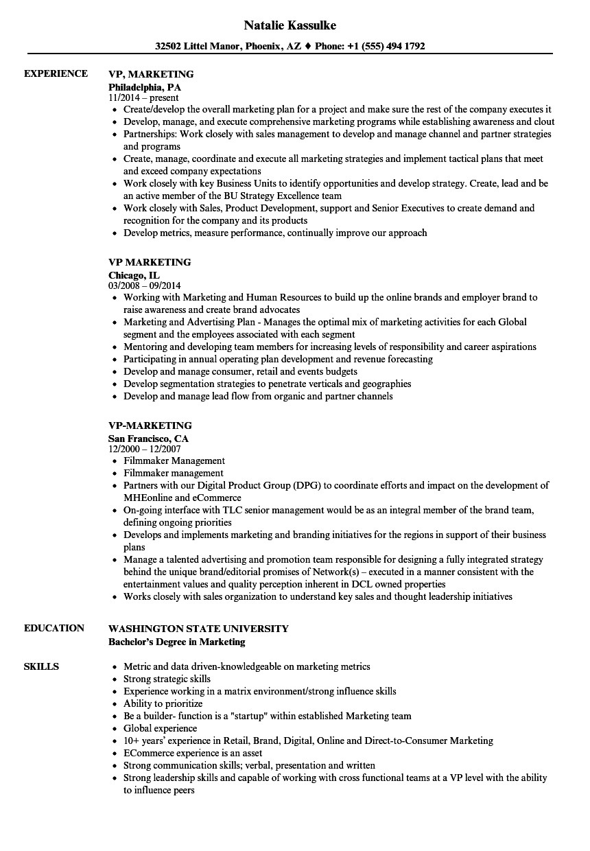 Superior Velvet Jobs Regarding Vp Marketing Resume