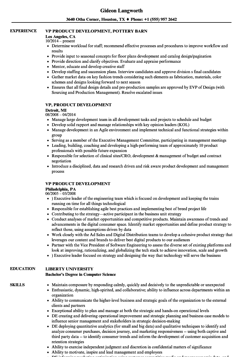 vp product development resume samples velvet jobs