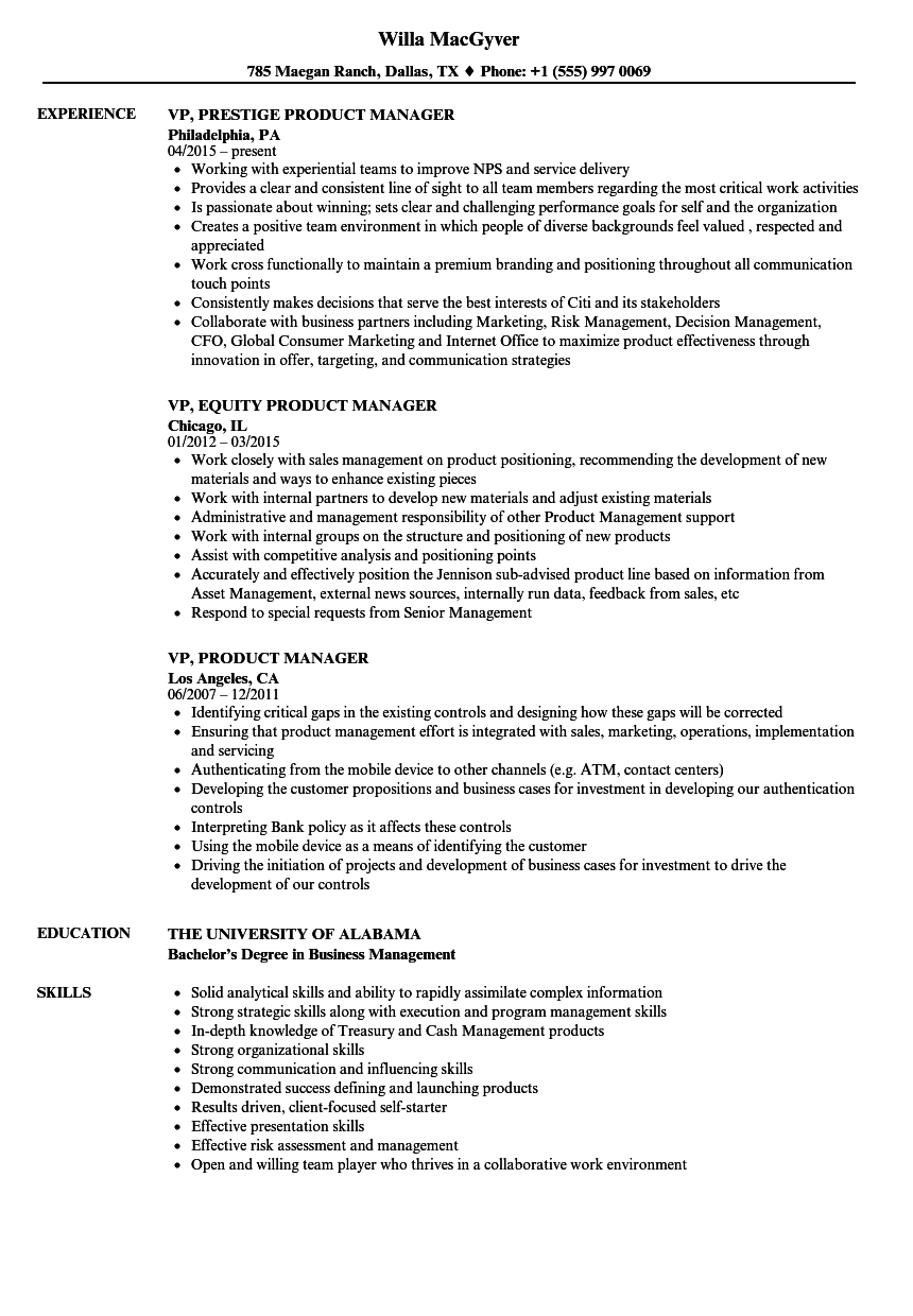 VP, Product Manager Resume Samples | Velvet Jobs