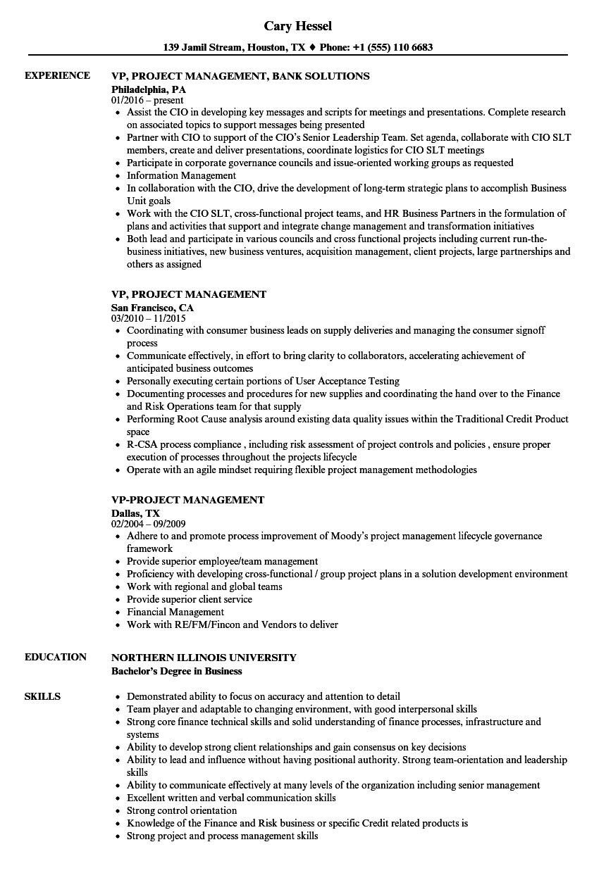 vp  project management resume samples