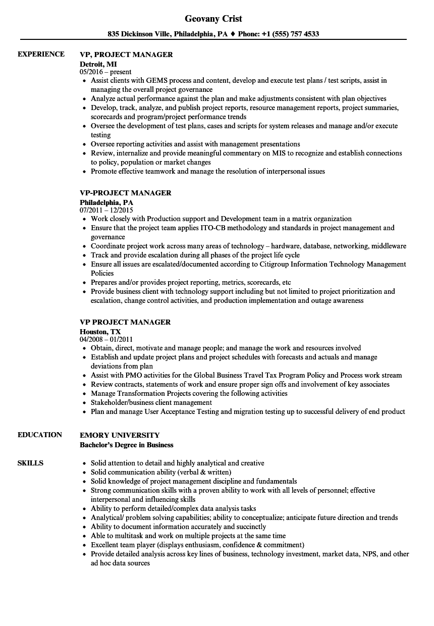 vp-project-manager-resume-sample Vp Information Management Resume on vp marketing resume, vp accounting resume, vp public affairs resume, vp supply chain resume, vp design resume, vp engineering resume, vp strategy resume, vp procurement resume, vp safety resume, vp development resume, vp it resume, vp finance resume, vp analytics resume,