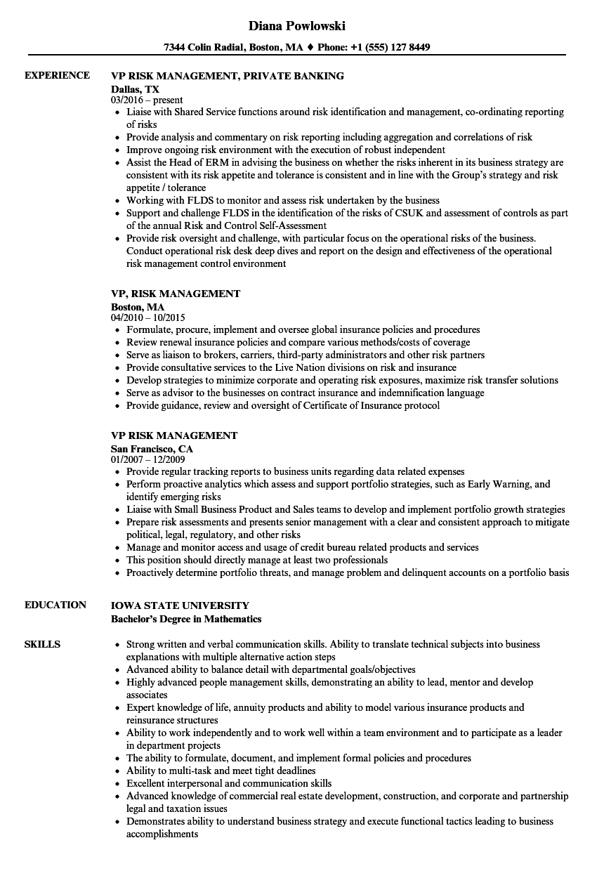 Vp Risk Management Resume Samples Velvet Jobs