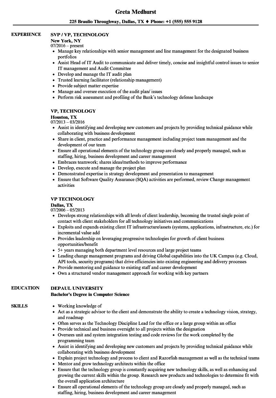 vp  technology resume samples