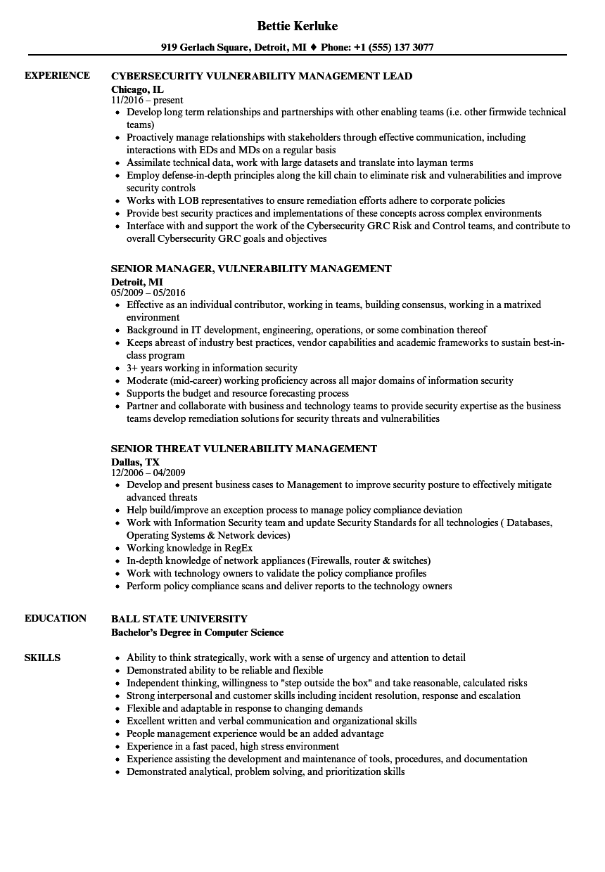 vulnerability management resume samples